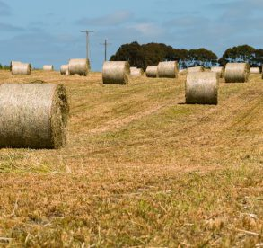 3 tips for successful family farm succession planning